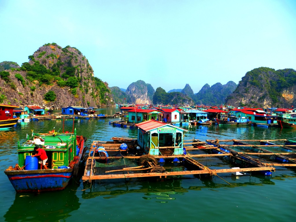 Travel Vietnam Cat Ba boating villages