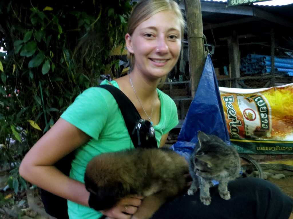 Travel Laos KT animals