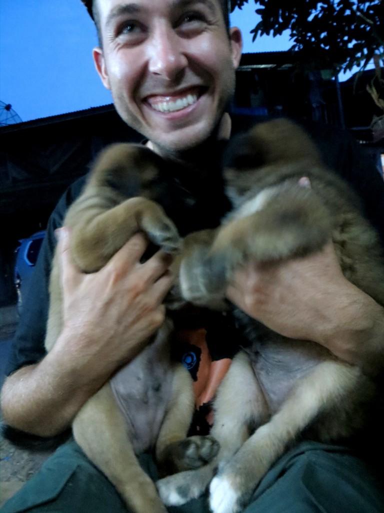 Travel Laos Lou puppies