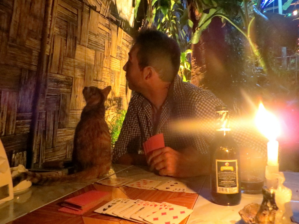 Date night dinner at Lao Lao restaurant. Dark beer, candlelight, cards, and cats!