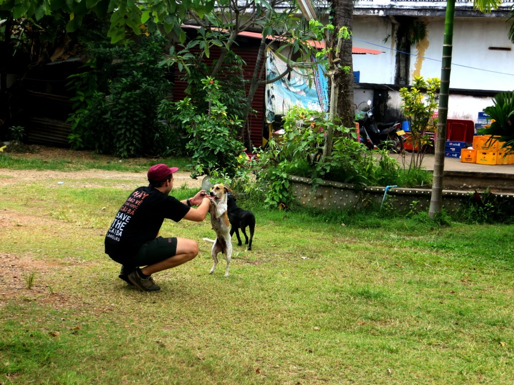 We quickly find pups to play with - they are abundant in Laos
